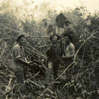 A group of soldiers surrounded by foliage