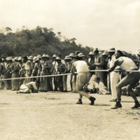 A large number of soldiers playing tug of war