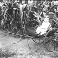 Baby in child's carriage