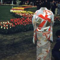 Kimono on Display