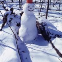 Snowman on campus