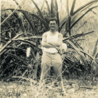 Soldier and a large plant