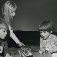 Reptile exhibit at UW-Parkside