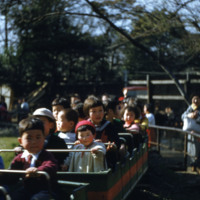 Children on an amusement park ride