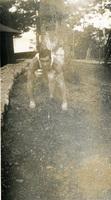 Daniel Klapproth strikes a running pose